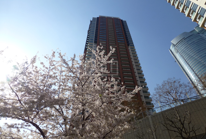 Exterior | ROPPONGI HILLS RESIDENCE C TOWER Exterior photo 01