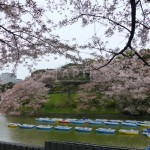 Chidorigafuchi   CHIDORIGAFUCHI HOUSE Exterior photo 16