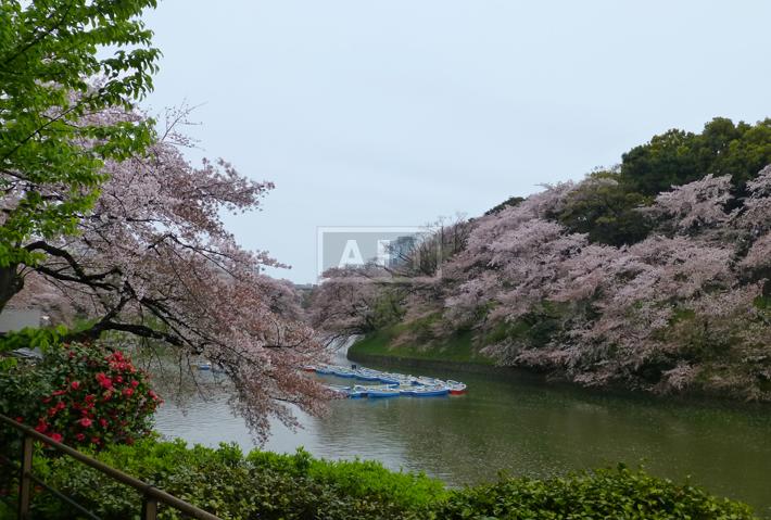 Chidorigafuchi   CHIDORIGAFUCHI HOUSE Exterior photo 15