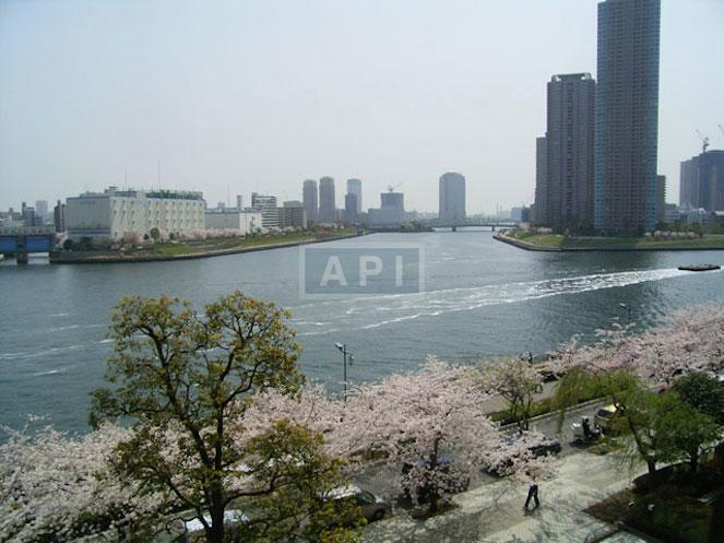| SUMIDA RIVER SIDE TOWER Exterior photo 16