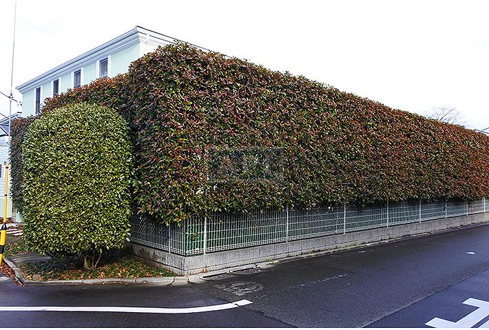 | SETA HOUSE Exterior photo 16