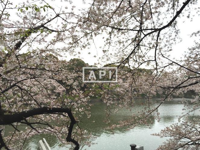 | THE PARKHOUSE GRAN CHIDORIGAFUCHI Exterior photo 20