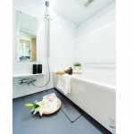 | TOWA CITY HOMES NISHIAZABU Interior photo 03